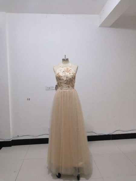 A-Line/Princess Halter Floor-Length Tulle Dresses with Applique